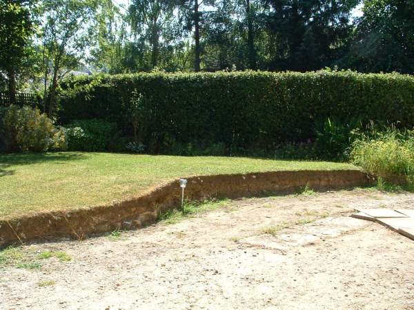 Old lawn and driveway area