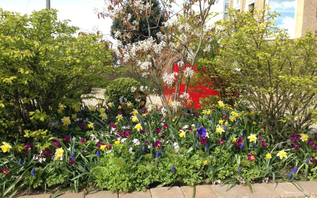 Spring Bling…