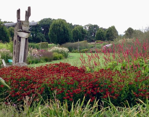 A view over Sussex Prairie Garden