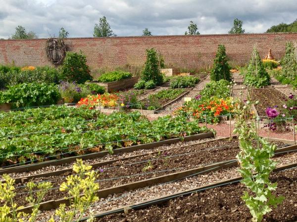 Dumfries House vegetable garden