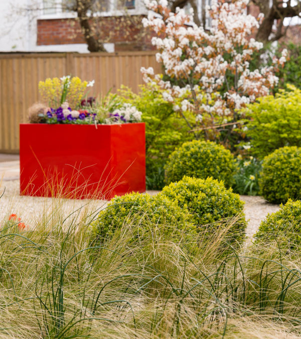 Front Gardens: Do you have Colour 365 Days a Year?