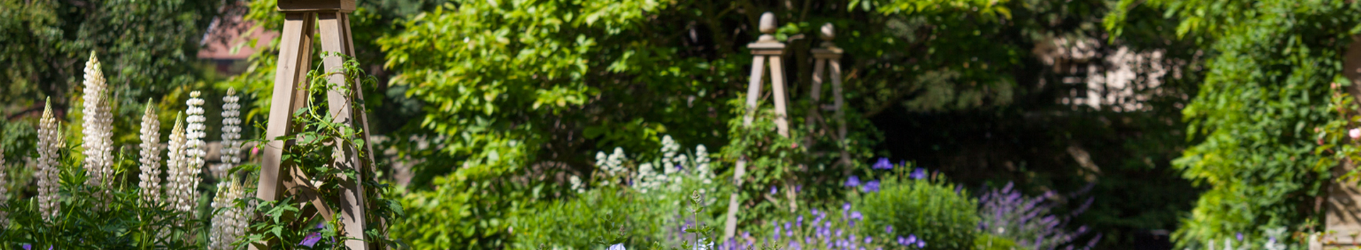 Make Your Garden Your Home - mixed planting